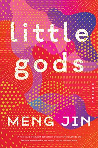 Little Gods A Novel  - Epub + Converted pdf