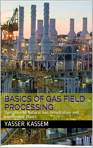 Basics of Gas Field Processing: Operation of Natural Gas Dehydration and Sweetening Plants - Epub + Converted pdf