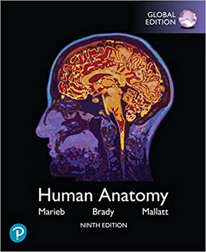 Human Anatomy, Global Edition (9th Edition) [2019] - Original PDF