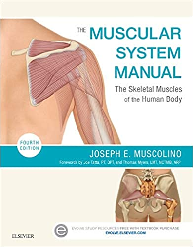 The Muscular System Manual: The Skeletal Muscles of the Human Body (4th Edition) - Original PDF